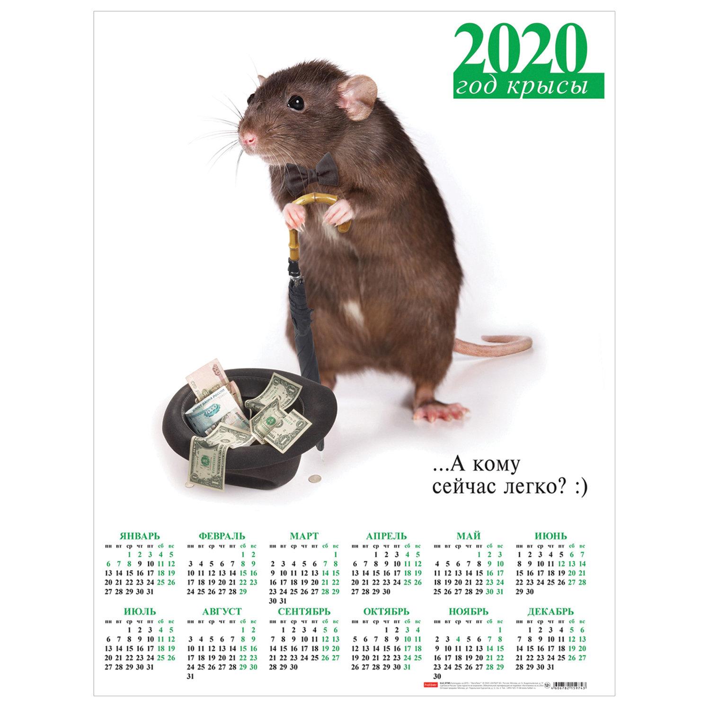 """Календарь, А2, 2020 год, 45х60 см, вертикальный, """"Знак Года"""", HATBER, Кл2_04461"""