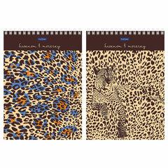 """Блокнот А5 (144х208 мм), 60 л., гребень, с подложкой, в точку, HATBER """"Premium"""", """"Леопардовый"""", 60Б5A9гр"""