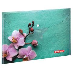 """Папка-конверт с кнопкой BRAUBERG """"FLOWER"""", А4, 160 мкм, до 100 листов, цветная печать, 228031"""